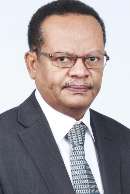 Babikir Ismail