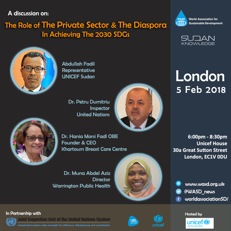 The role of the private sector and the diaspora in achieving the 2030 SDGs